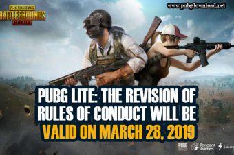 PUBG Lite Valid On March 28, 2019