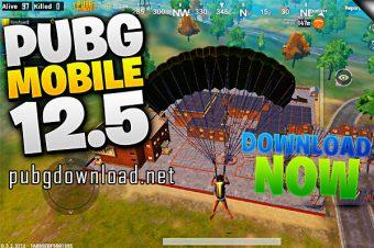 PUBG Mobile Releases 0.12.5 Beta
