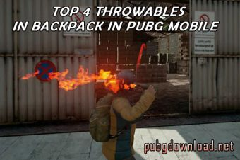 Top 4 Throwables You Have To Store In Backpack in PUBG Mobile