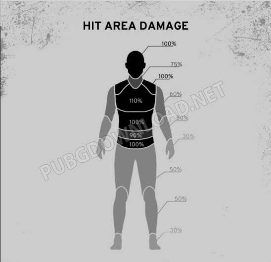 Broke down the damage areas in detail.
