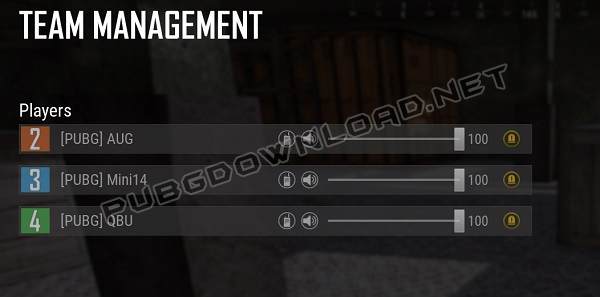 Team Management Settings in PUBG Lite