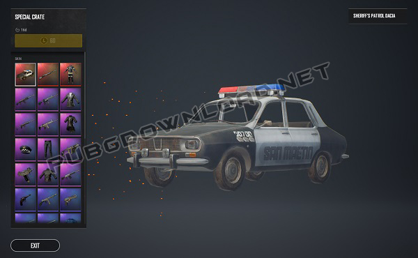 weapon and vehicle skins