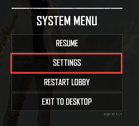 Settings to Set Up FPS in PUBG PC