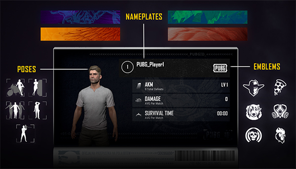 Show off yourself through your PUBG ID
