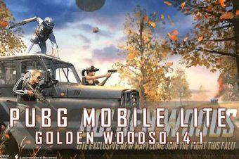 PUBG Mobile Lite 0.14.1