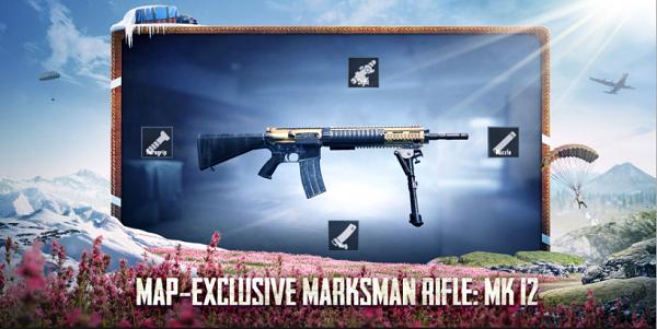 Marksman rifle: Mk 12